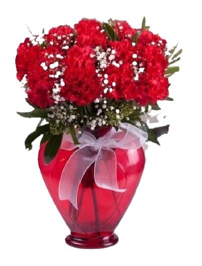 Kalp Cam Vazoda Kırmızı Aşk