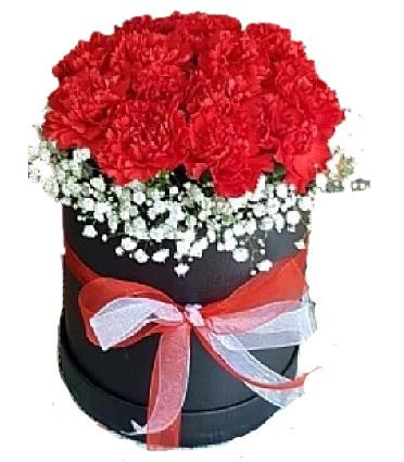 Siyah Kutuda Kırmızı Çiçekler